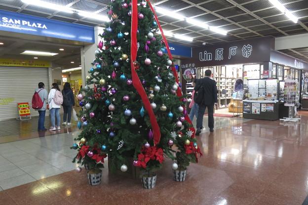 サンチカ クリスマスツリー_03