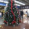 Photos: サンチカ クリスマスツリー_03