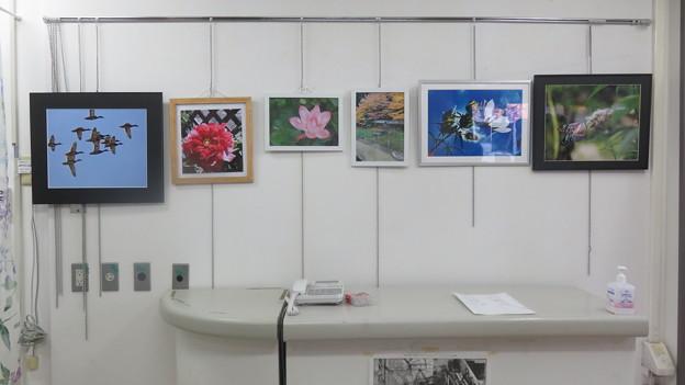 年金者組合文化作品展_05