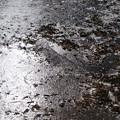 長谷池の氷_02