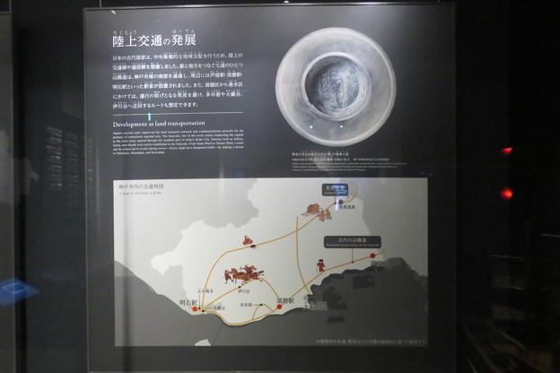 Photos: 常設展 神戸の歴史_02