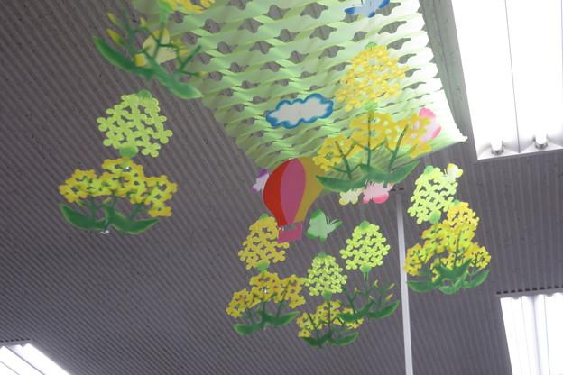 兵庫郵便局 菜の花