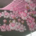 Photos: 兵庫郵便局 桜咲く