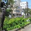 大倉山 緑と彫刻の道_02