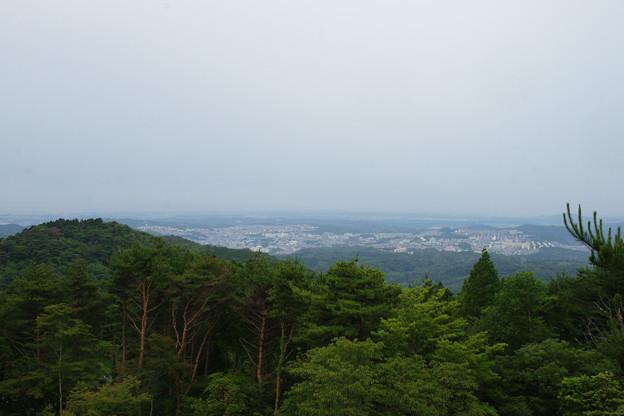 摩耶山の眺望