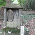 Photos: 石峯寺 88か所めぐり_03