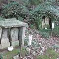 Photos: 石峯寺 88か所めぐり_06