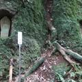 Photos: 石峯寺 88か所めぐり_17