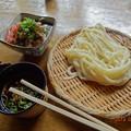 Photos: 万葉うどん