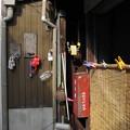 Photos: 尾道ゾーさん
