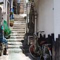 Photos: 陽の当たる階段