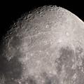 Photos: moon0044_m0824pupsh