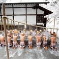 Japan festival ceremony