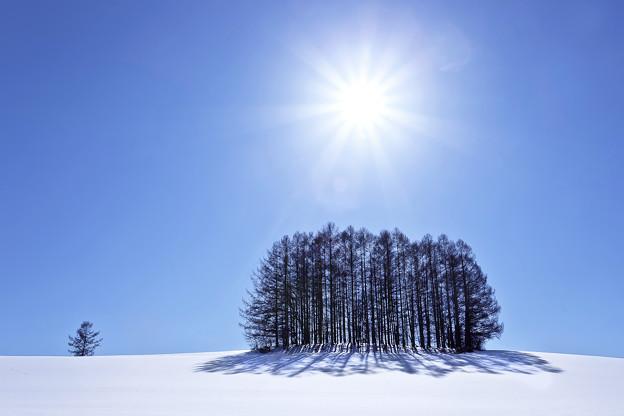 写真: Winter in Hokkaiddo
