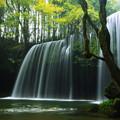 秋~鍋ヶ滝
