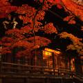 写真: 真如堂の秋