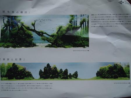 PC010833