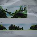 Photos: PC010833