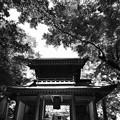 常隆寺山門