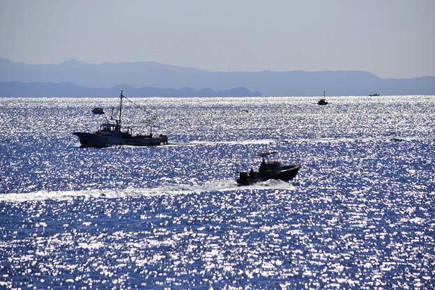 紀淡海峡を行き交う漁船