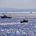 Photos: 紀淡海峡を行き交う漁船