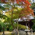 Photos: 秋の成相寺
