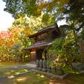 Photos: 秋の常隆寺