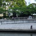 Photos: 横浜 鶴見川