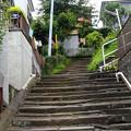 Photos: 横浜 根岸