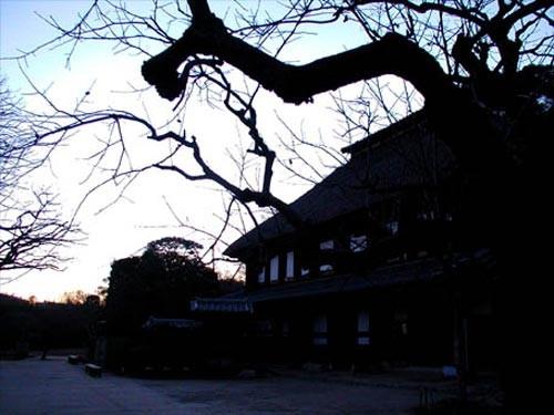 横浜 獅子ヶ谷