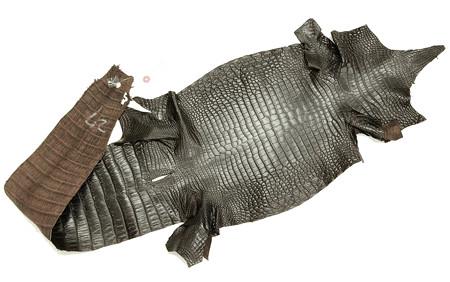 財布に使ったクロコダイル