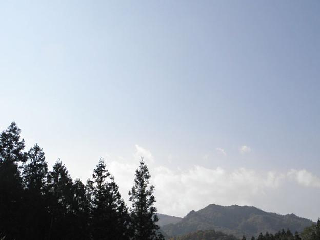 写真: 2013.11.18