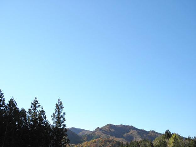 写真: 2013.11.20