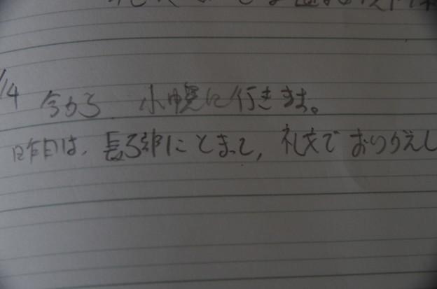 IMGP5313