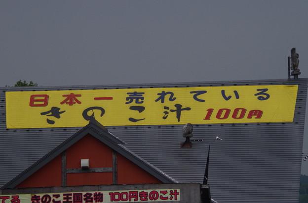 IMGP5340