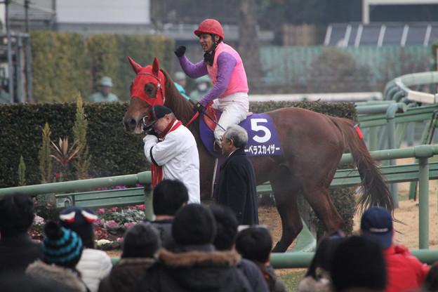 マーベラスカイザー レース後(12/12/22・第135回 中山大障害)