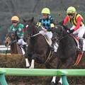 Photos: ラッキーバニラ レース