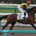 写真: バンズーム 返し馬