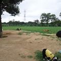 写真: TS3S0581