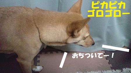 2012_09_12_01_44_58_b