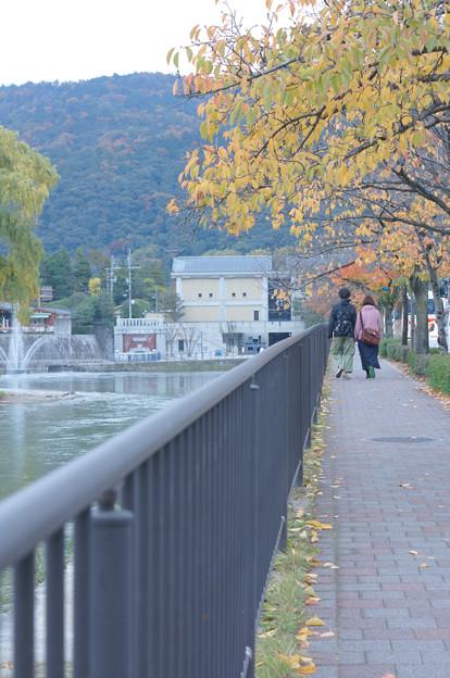 落ち葉の散歩道