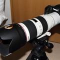 Photos: 7D+EF2×III+70-200mmf/2.8L-IS-II-USM-4