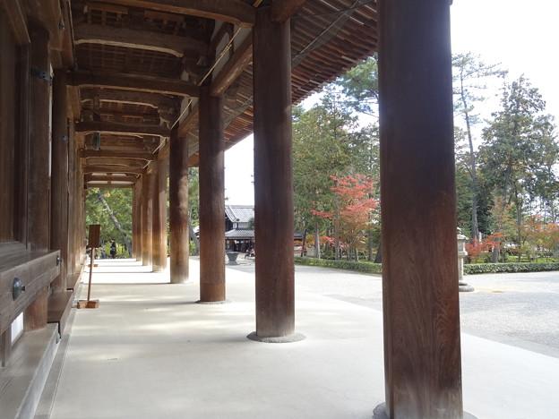 唐招提寺の金堂
