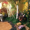 Photos: 2012和の宴 庭園