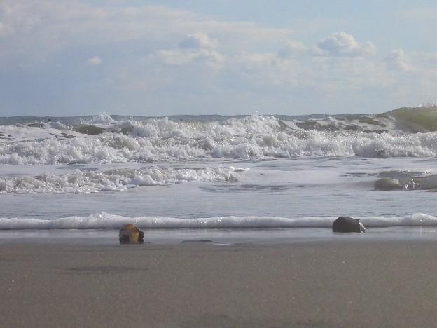 大洗サンビーチ 海その275 CIMG4518