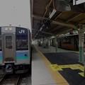 Photos: E127系と313系(辰野駅)