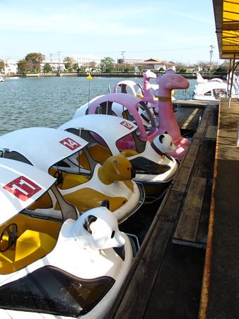 蓮花寺池公園のボート2