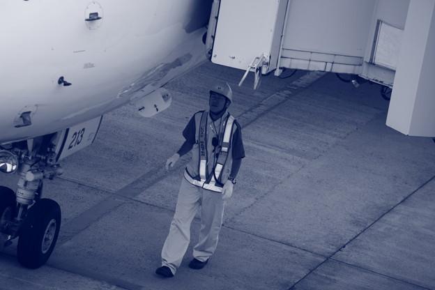 機体に目を見張る