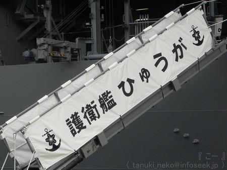 121012-大桟橋 海自観艦式 (11)