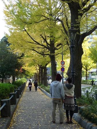 121115-紅葉 山下公園通り (15)